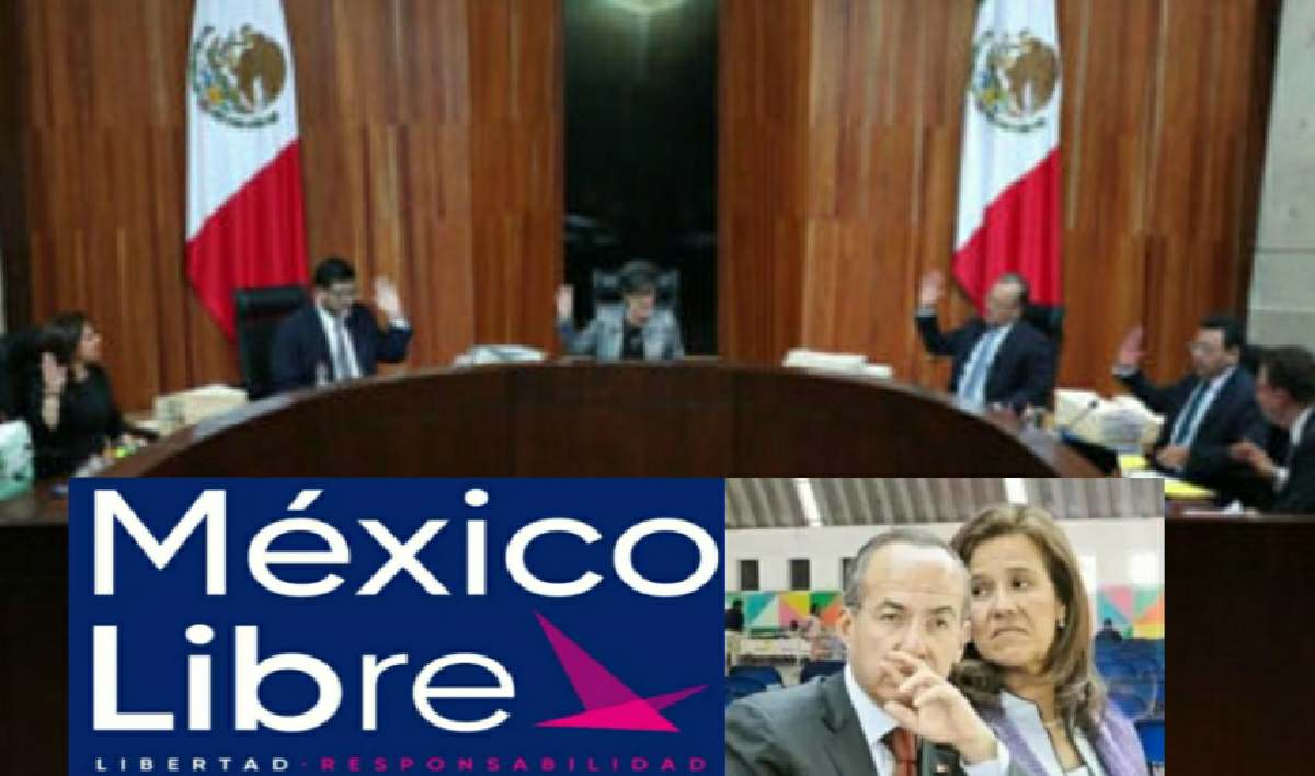 TEPJF niega registro a México Libre por irregularidades
